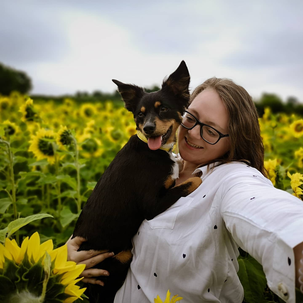 Adele Pamber with dog in sunflower field